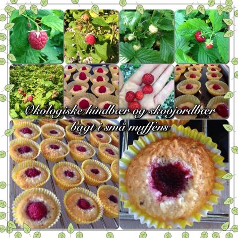 Små muffens med hindbær og skovjordbær