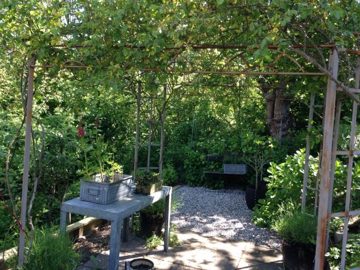 Haven i juni