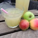 Æblejuice med squash