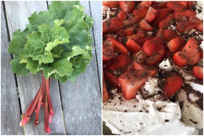 Pavlova med rabarberskum og jordbær