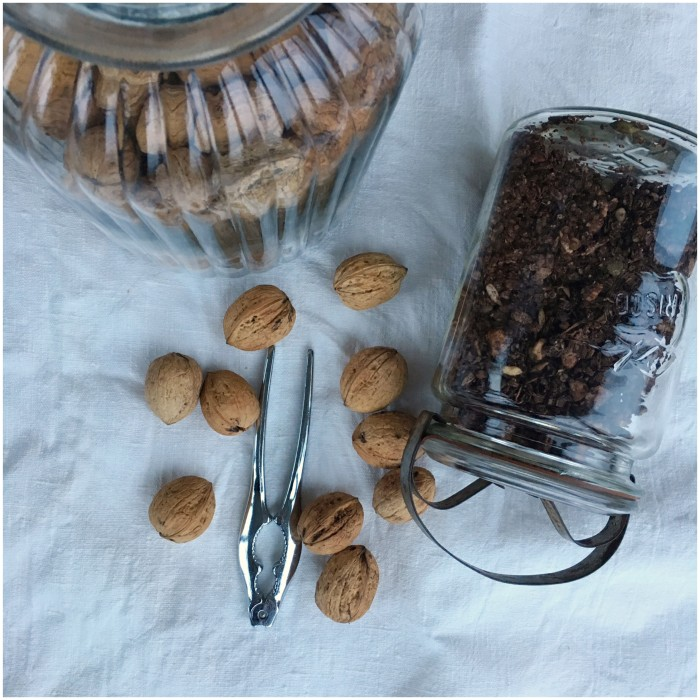 Honningristet granola med chokoladesmag