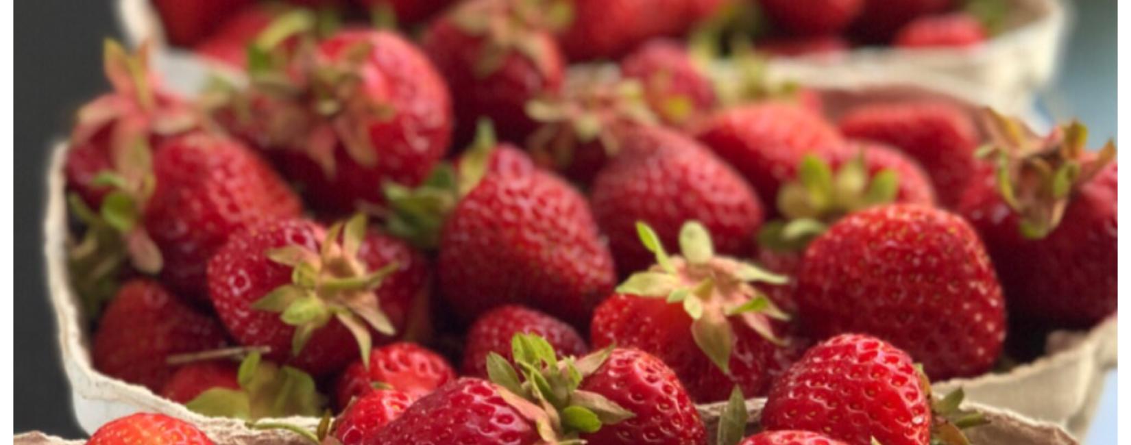 Den søde jordbærsæson